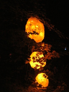 collaborative light in the woods